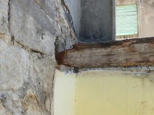 pudrición cabeza de viga de madera