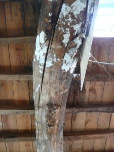 viga madera alabeada