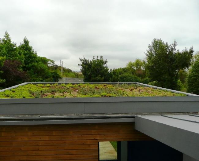 cubierta ecológica en verano