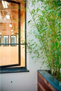 29 detalle patio bambú