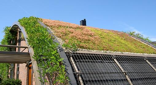 cubierta ecológica inclinada