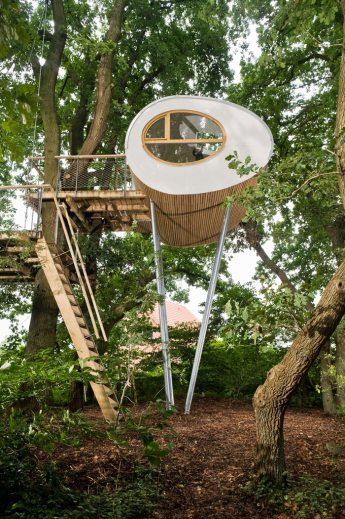 baumraum refugio casa árbol madera y curvas estructura liviana