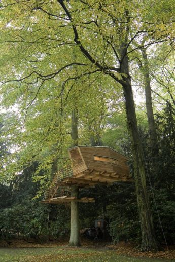 baumraum refugio casa árbol madera estructura liviana