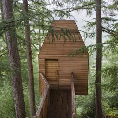 estudio artista Malcolm Fraser Architects refugio en los árboles