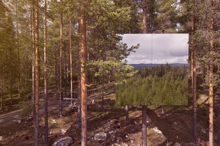 treehotel mirrowcube habitación en el árbol con espejos