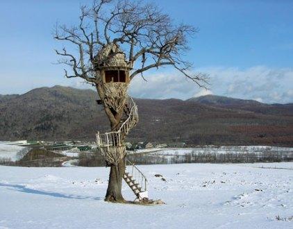 cabaña en el árbol