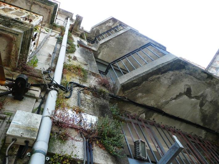 vegetación en fachada de piedra de granito silleria